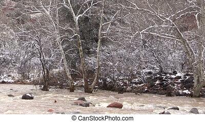 Stream Flooding in Winter