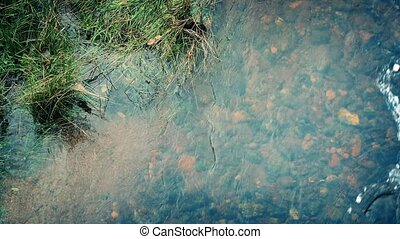 Stream Flowing By Grassy Bank - Peaceful stream with grassy...