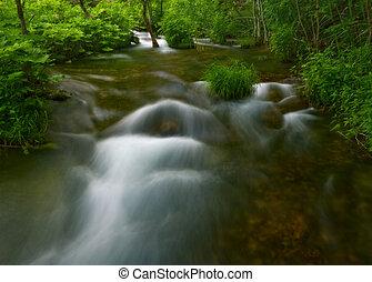 Stream flowing in a dark forest.