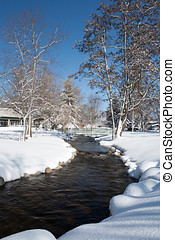 Stream in a park during winter.