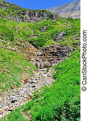 stream in Glacier National Park
