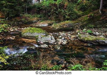 Stream in Karkonosze Mountains