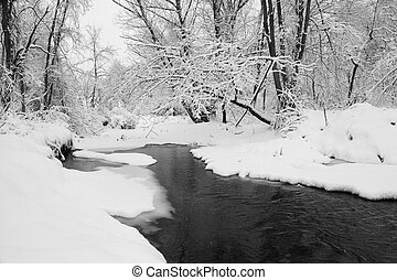 Stream in Snow