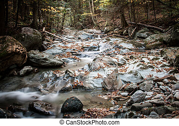 Stream in Vermont in the united states