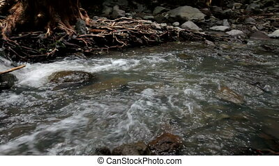 Stream - Mountain stream on rocks