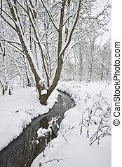 Stream running through Winter forest with deep snow