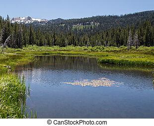 Mount Lassen - Stream with Mount Lassen in the distance at ...