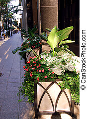 City street in the summer decorated with potted flowers
