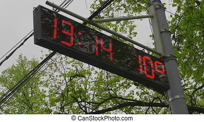 Street electronic clock in the foliage of a tree. UltraHD stock footage.