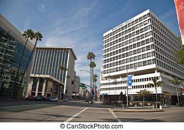 Street in Beverly Hills