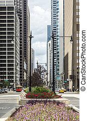 Street in Chicago, Illinois, USA