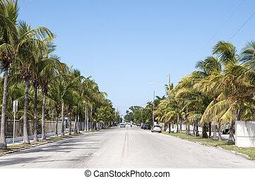 Street in Key West, Florida, USA