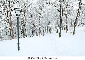 Street lamp and forest park covered in deep snow