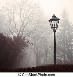Street lamp and forest park in fog