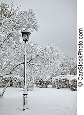 Street lamp in a snow park