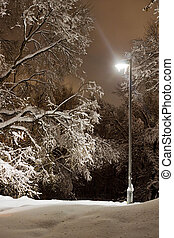 street lamp in city park in the winter evening