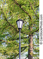 Street lamp in the old style.