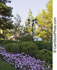 Street lamp in the park.