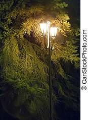 street lamp with two vintage shades