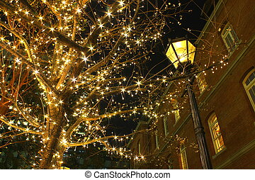 Street lamp with Xmas illumination in Tokyo, Japan.