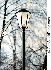Street lantern in winter snowy city park