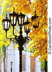 Street lantern on the autumn foliage background