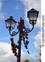 Street lantern with flower ivy