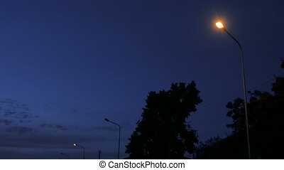 Street light against twilight background. Dark sky, trees...