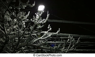Street Light in Snow - Snow falling around street lamp