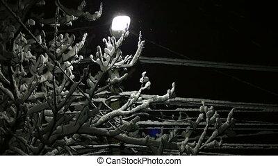 Street Light in Snow - Snow falling around street lamp