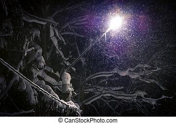 Street light shining through falling snow