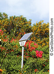 Street small solar panel