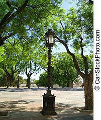 streetlight in a Park in south of Spain