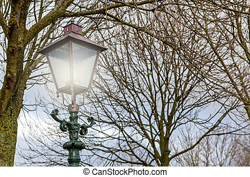 streetlight in the park