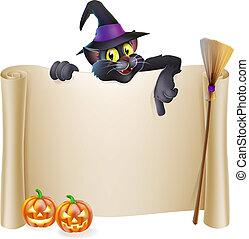 strega halloween, rotolo, gatto
