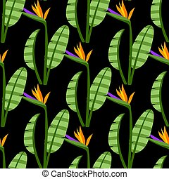 Strelitzia Seamless Pattern Colorful bright flowers on black background.