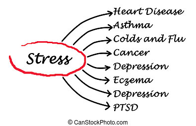 stress, consequentie