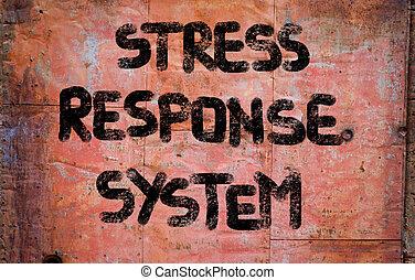 stress, risposta, sistema, concetto