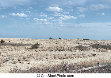 Stretch of dunes along Scusset Beach on Cape Cod Canal