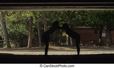 Stretching before training - A sport couple warms up before...