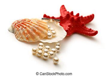 streuung, weißes, perlen, in, seashell, und, seastar