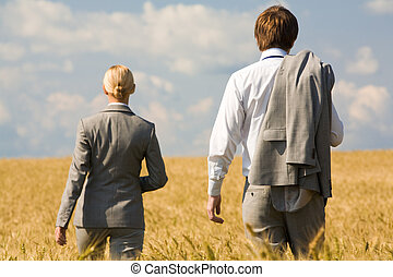 Stride - Rear view of associates in suits walking in wheat...