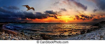 Striking sunset above the sea - Panoramic orange bright ...