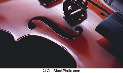 string music instruments and arts - Close up violin on white...