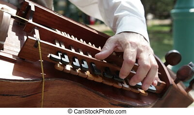 Stringed instrument Hurdy Gurdy close up - Street musician...