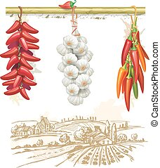 Strings of red peppers against country landscape