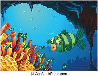 stripe-colored, pesci, scuola, mare, sotto