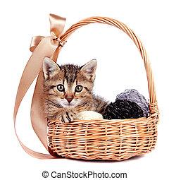Striped kitten in a basket with woolen balls