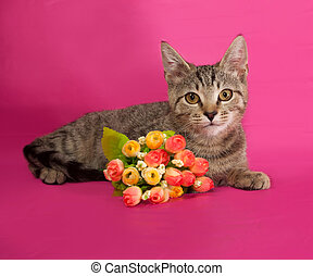 Striped kitten with bouquet of flowers lying on pink
