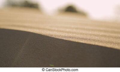 Stripped Sand Dunes, Qld Island, Australia - Extreme close...